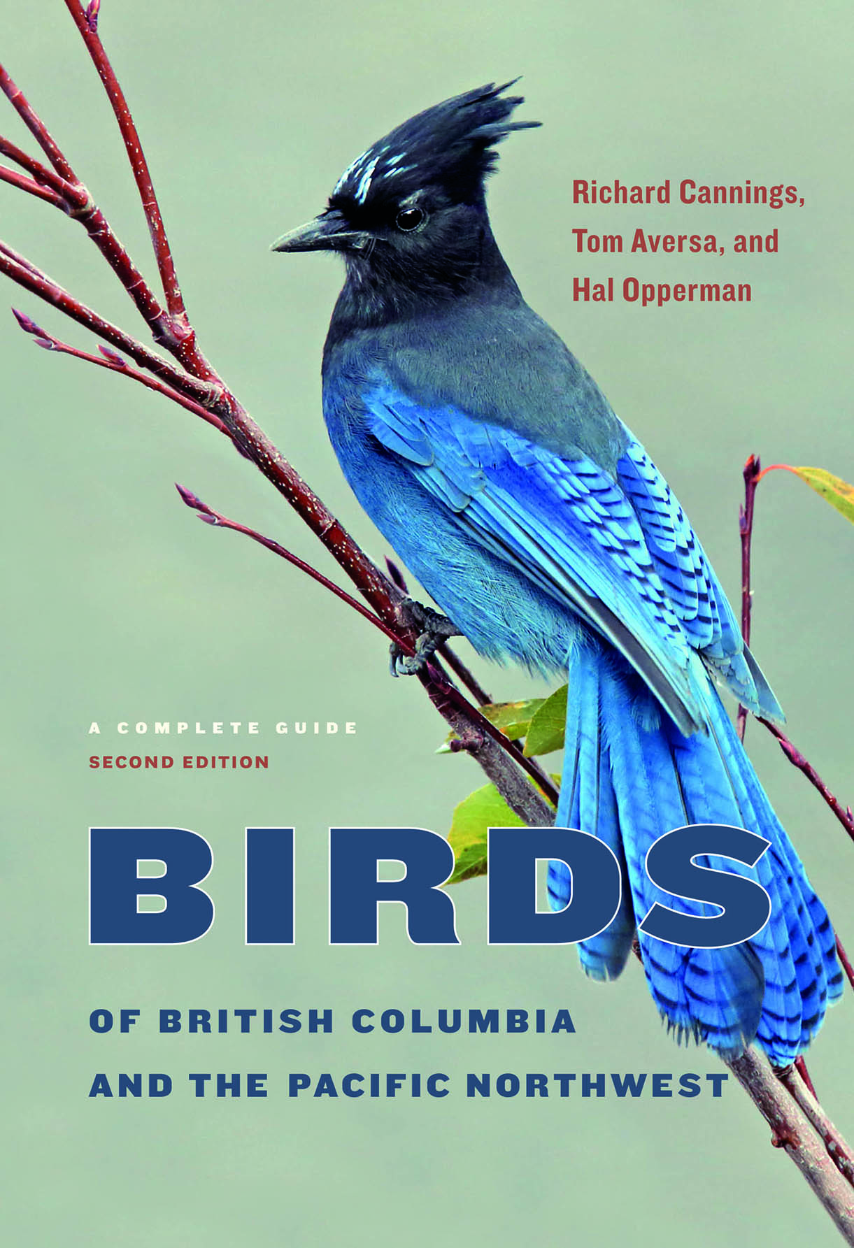 book cover with bird